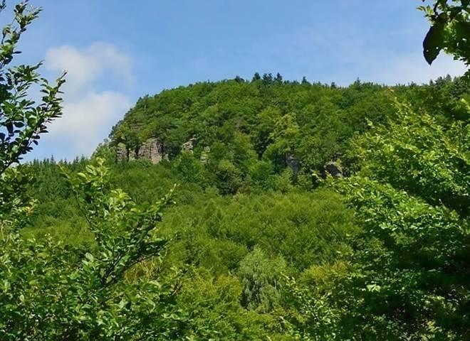 Obrázok sekcie Prírodná rezervácia Kopa